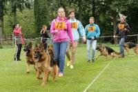 KVV Polička 2017 - Dospívající psi
